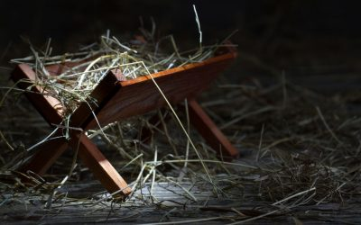 Why was Jesus born in a stable?