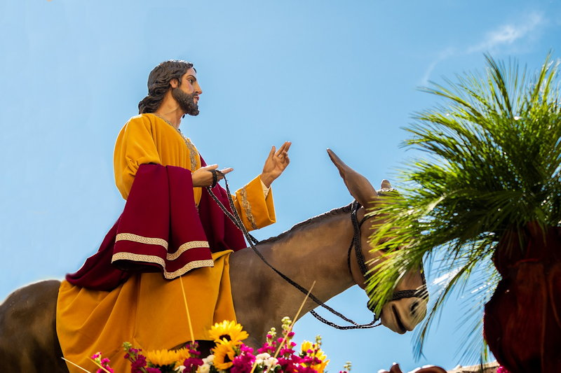 Why do we celebrate Palm Sunday